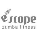 Zumba Fitness Website and Brand Optimization